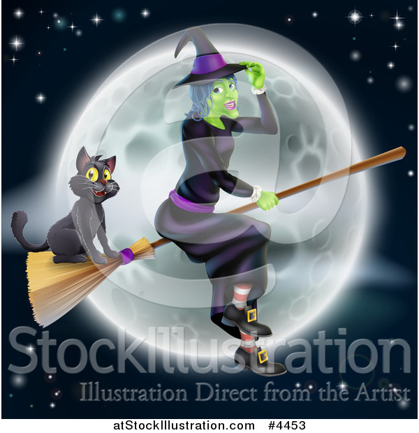 Vector Illustration of a Green Halloween Witch Flying with a Cat on a Broomstick Against a Full Moon