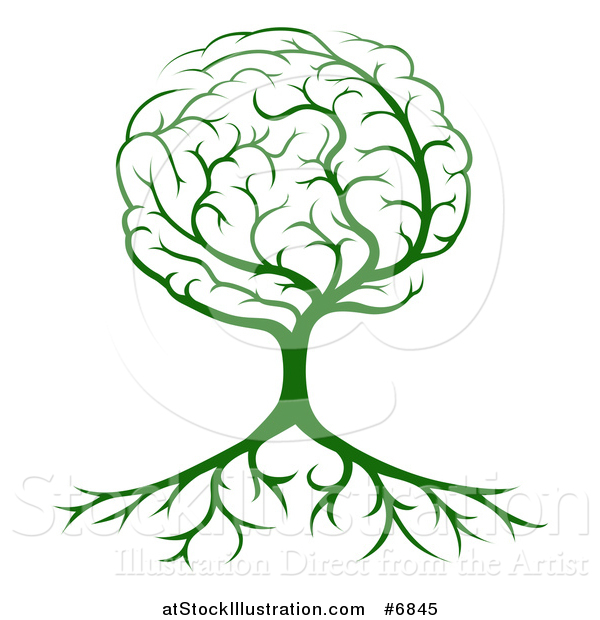 Vector Illustration of a Green Tree with a Brain Canopy and Roots