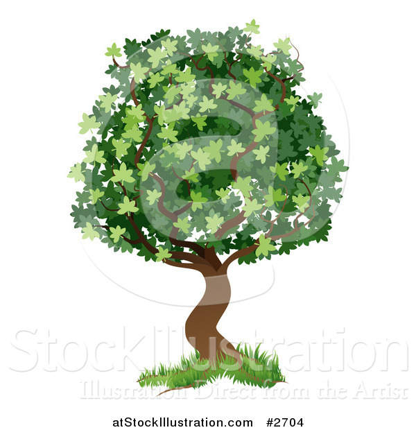 Vector Illustration of a Green Tree with Grass at the Base