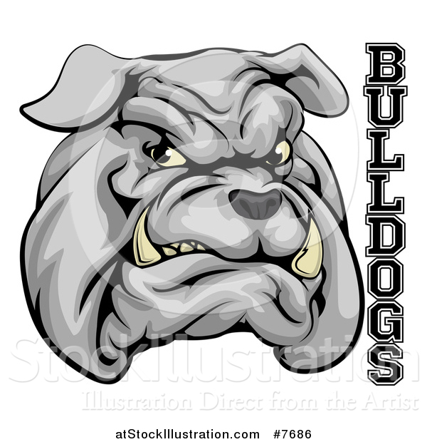 Vector Illustration of a Growling Gray Aggressive Bulldog Mascot Face with Text