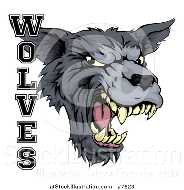 Vector Illustration of a Growling Gray Wolf Mascot Head and Text