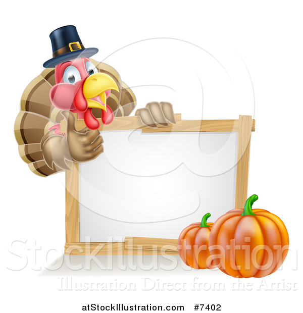 Vector Illustration of a Happy Thanksgiving Pilgrim Turkey Bird Giving a Thumb up over a Blank White Board Sign with Pumpkins