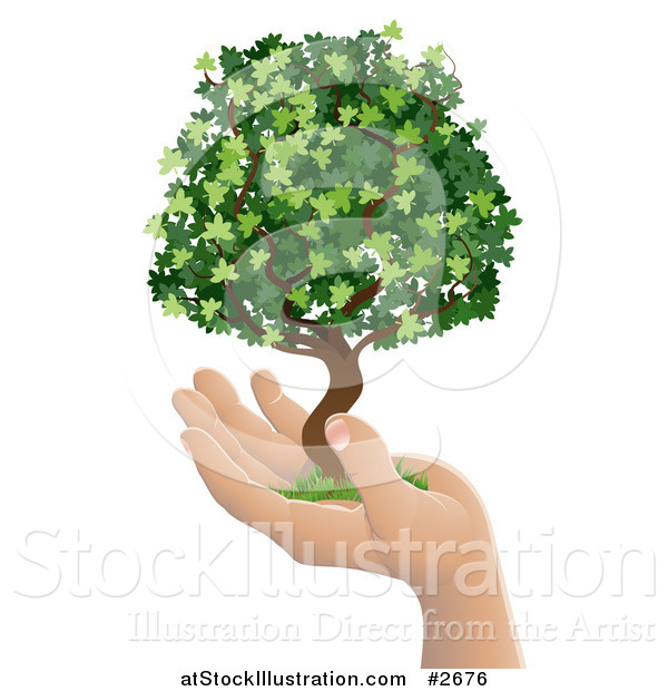 Vector Illustration of a Human Hand Holding a Lush Green Tree