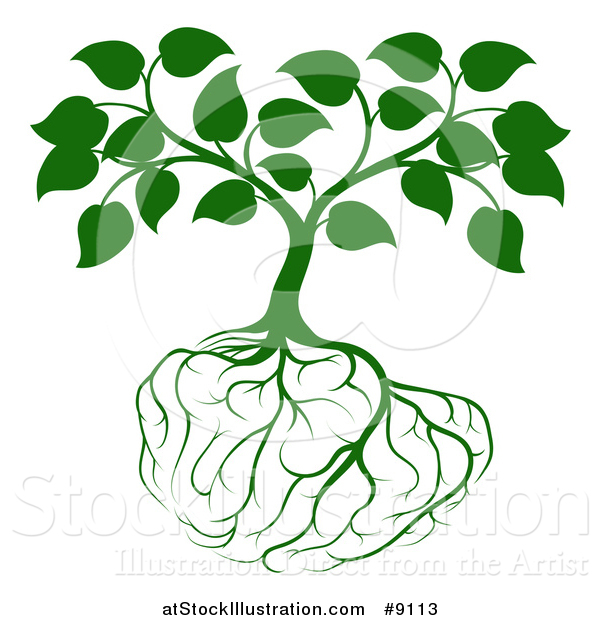 Vector Illustration of a Leafy Green Tree with Brain Roots