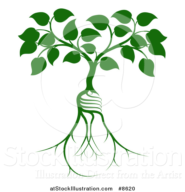 Vector Illustration of a Leafy Heart Shaped Tree Growing from Light Bulb Shaped Roots