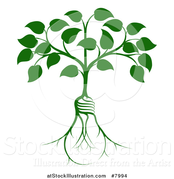 Vector Illustration of a Leafy Heart Shaped Tree with Light Bulb Shaped Roots