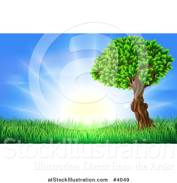 Vector Illustration of a Lush Tree and Grass at Sunrise