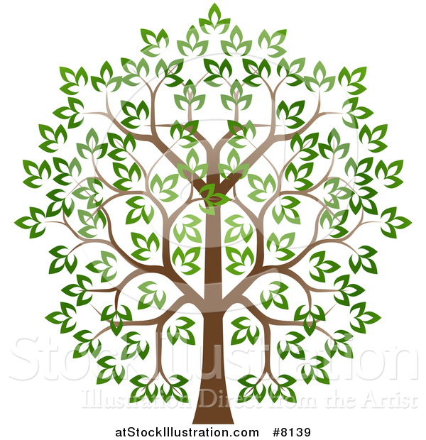 Vector Illustration of a Lush Tree with a Brown Trunk and Green Leaves