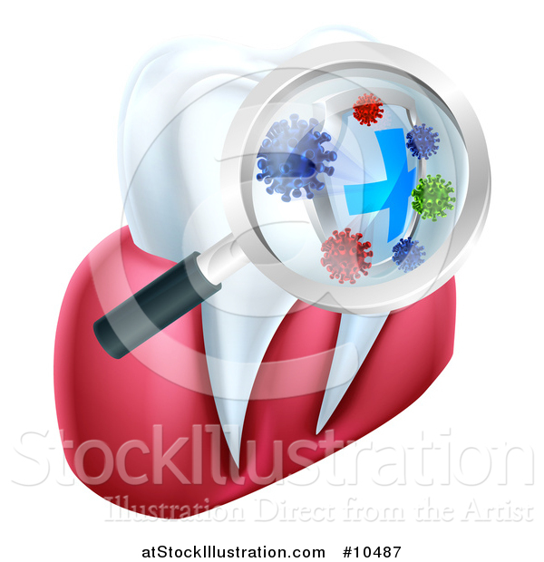 Vector Illustration of a Magnifying Glass over a Tooth, Displaying Bacteria and a Shield
