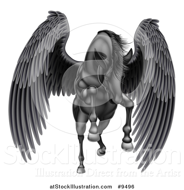 Vector Illustration of a Majestic Winged Black Horse Pegasus Flying Forward