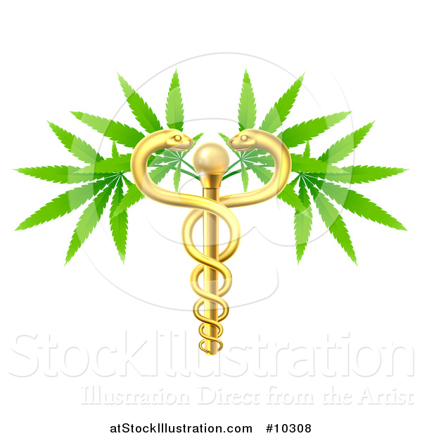 Vector Illustration of a Medical Marijuana Design with a Cannabis Plant Growing on a Gold Snake Caduceus