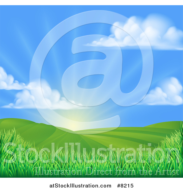 Vector Illustration of a Morning Sunrise over a Green Hilly Landscape with Puffy Clouds and Grasses