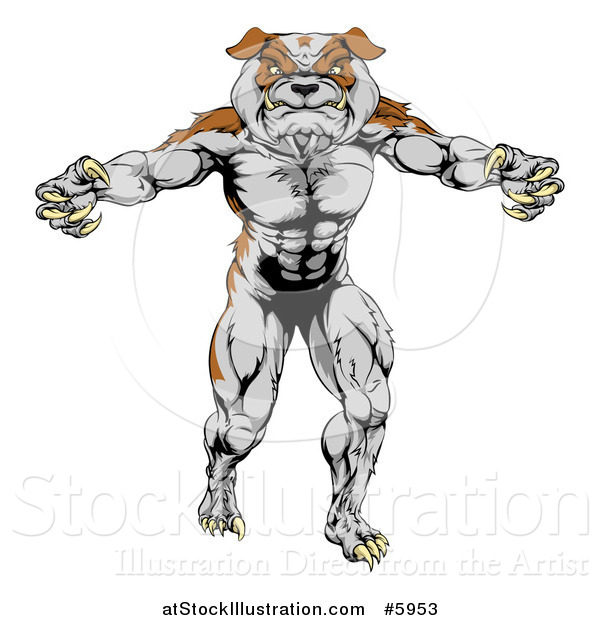 Vector Illustration of a Muscular Bulldog Man Mascot Standing Upright