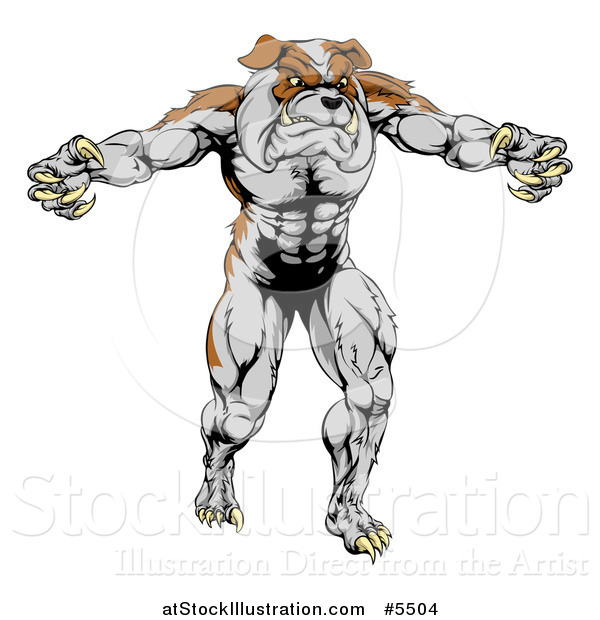 Vector Illustration of a Muscular Bulldog Mascot Standing Upright