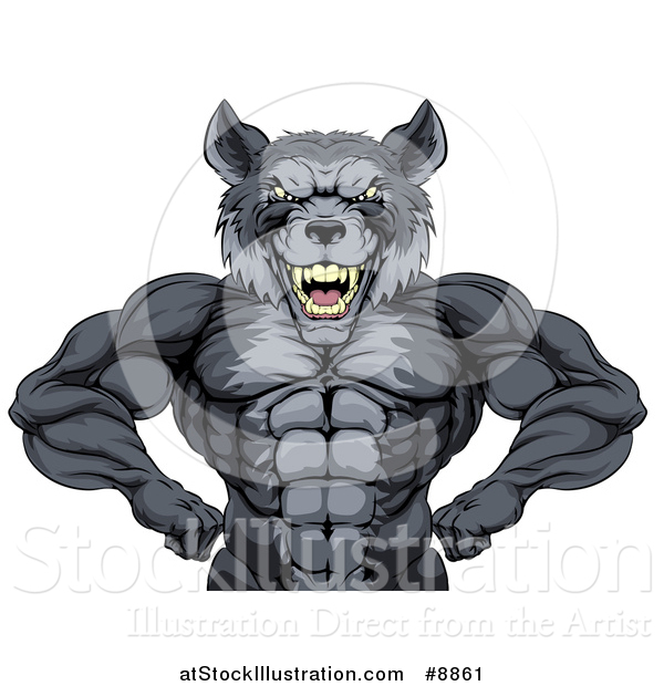 Vector Illustration of a Muscular Gray Wolf Man Mascot Flexing, from the Waist up