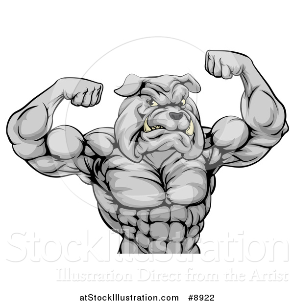 Vector Illustration of a Muscular Tough Gray Bulldog Man Mascot Flexing, from the Waist up