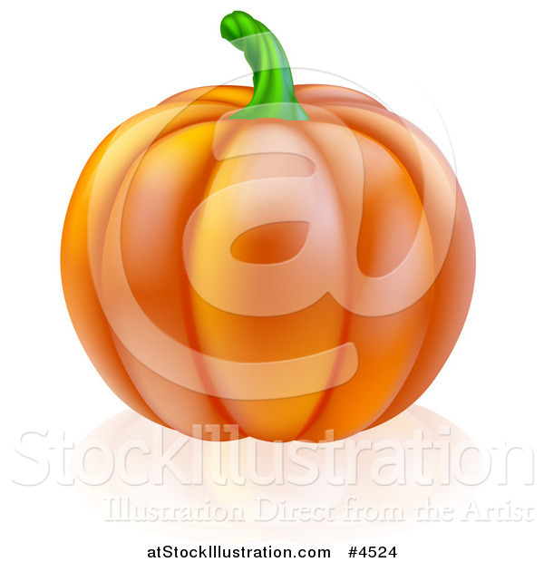 Vector Illustration of a Perfect Pumpkin and Reflection