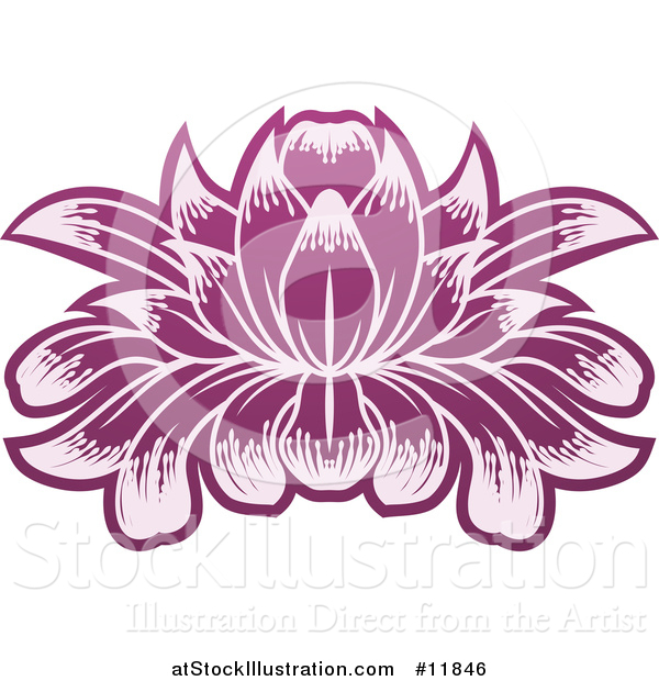 Vector Illustration of a Purple Blooming Lotus Flower