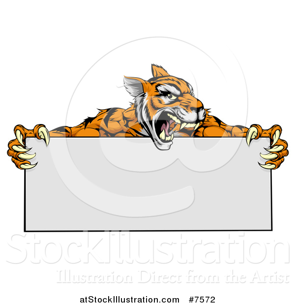 Vector Illustration of a Roaring Aggressive Tiger Sports Mascot Holding a Blank Wide Sign
