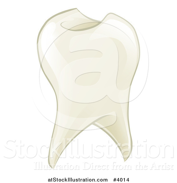 Vector Illustration of a Shiny Tooth