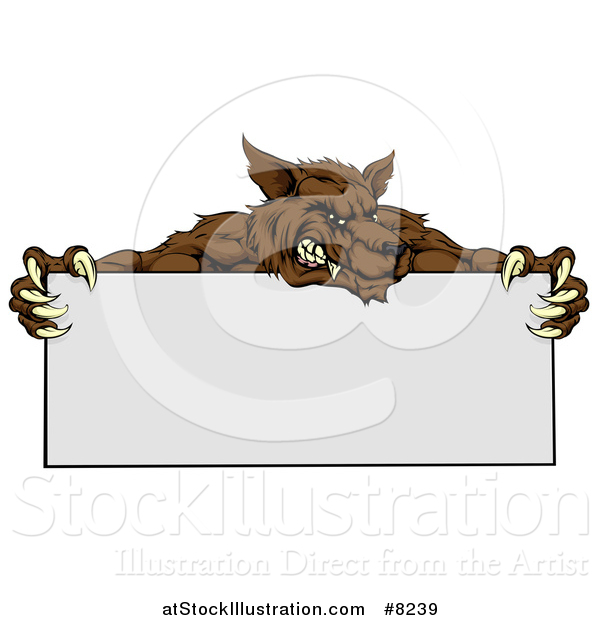 Vector Illustration of a Snarling Brown Wolf Mascot over a Blank Sign