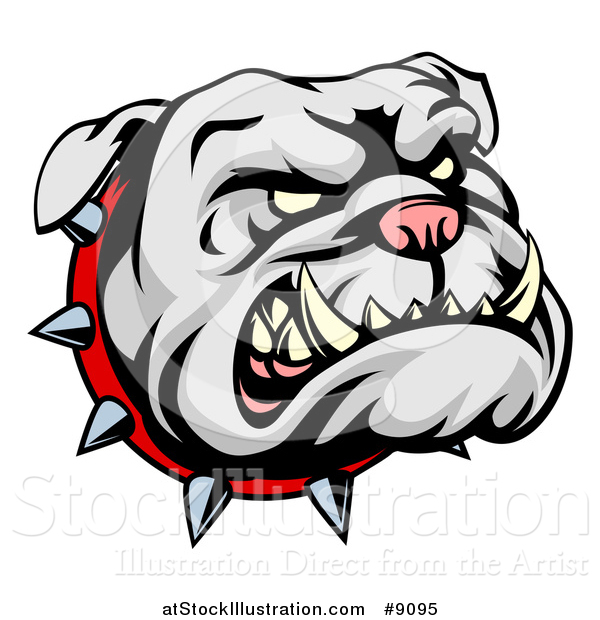 Vector Illustration of a Snarling Gray Bulldog Mascot Face with a Spiked Collar