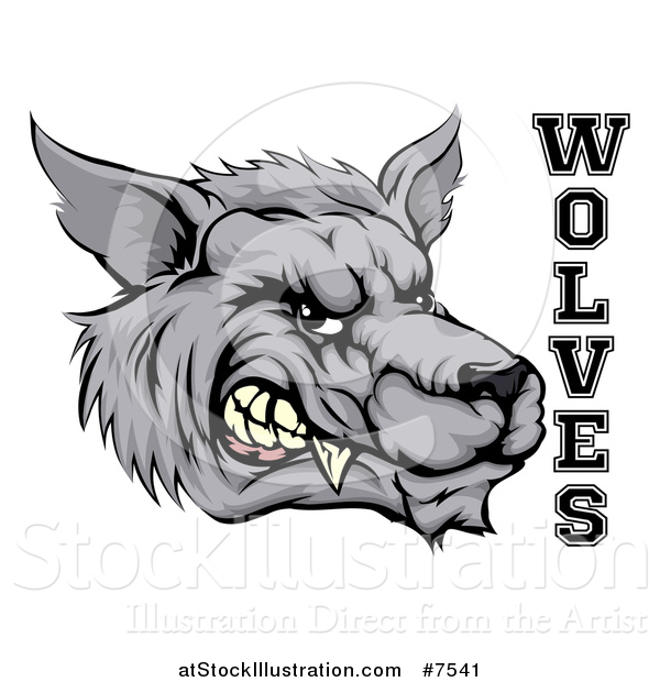 Vector Illustration of a Snarling Gray Wolf Mascot Head and Text