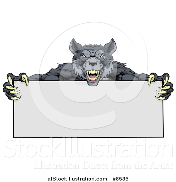 Vector Illustration of a Snarling Gray Wolf Mascot with Claws, Holding a Blank Sign