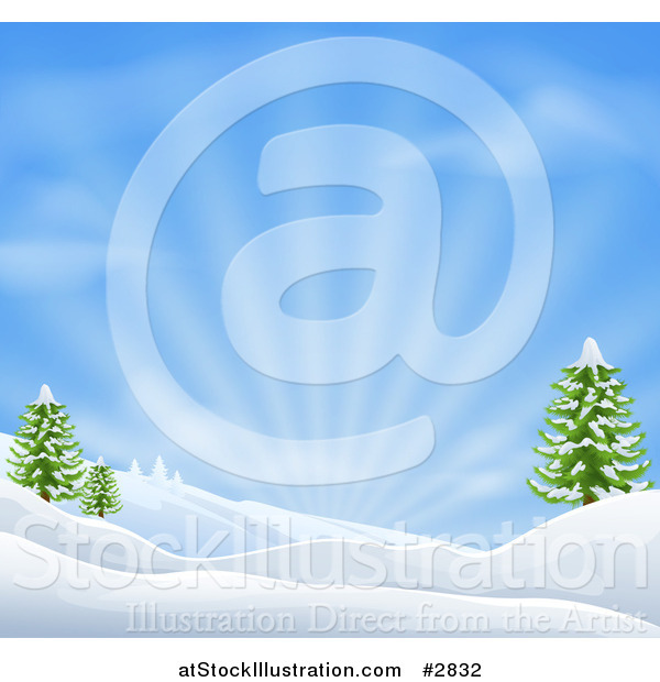 Vector Illustration of a Snowy Christmas Winter Background with Evergreens and Sunshine