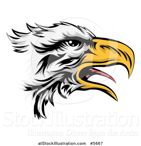 Vector Illustration of a Squawking Bald Eagle Head in Profile