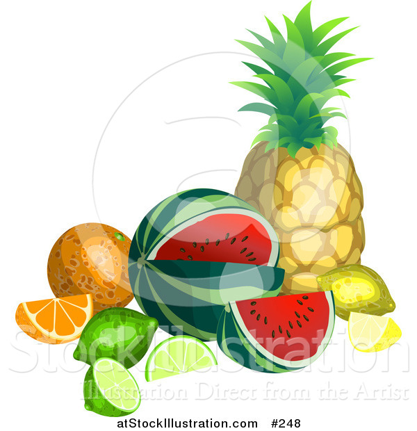 Vector Illustration of a Still Life of Tropical Fruits, Pineapple, Watermelon, Lemon, Lime, Orange