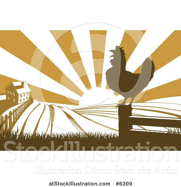Vector Illustration of a Sunrise over a Brown Silhouetted Farm House, a Crowing Rooster and Fields