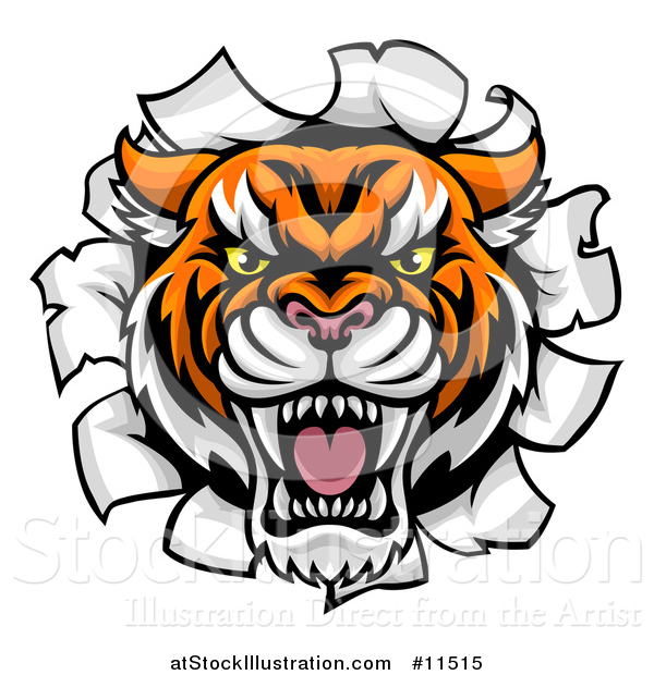 Vector Illustration of a Tiger Mascot Head Breaking Through a Wall