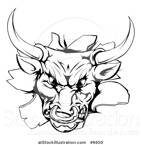 Vector Illustration of a Vicious Snarling Aggressive Black and White Bull Breaking Through a Wall