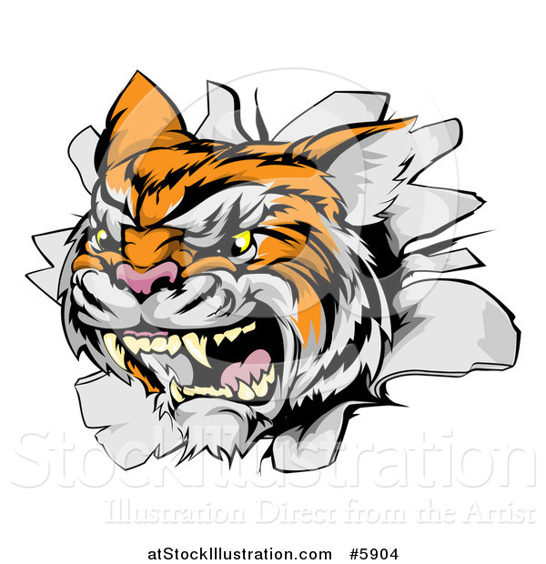 Vector Illustration of a Vicious Tiger Mascot Breaking Through a Wall