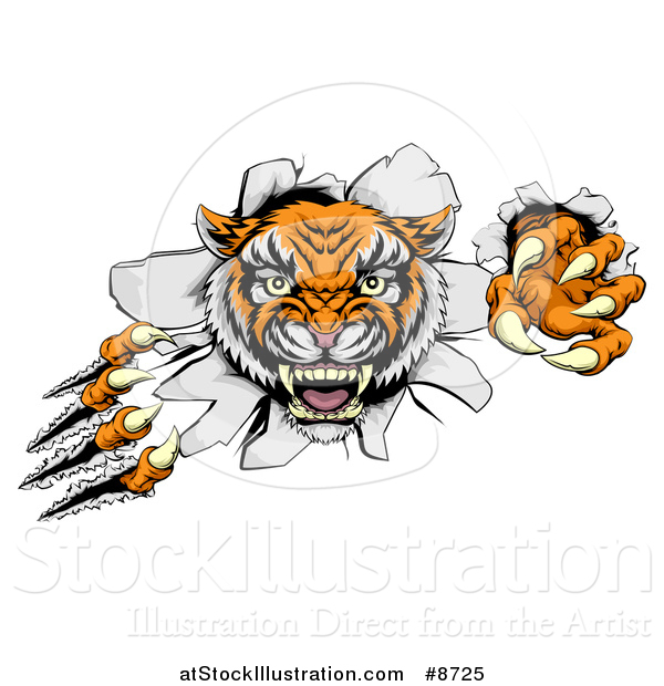 Vector Illustration of a Vicious Tiger Mascot Slashing Through a Wall