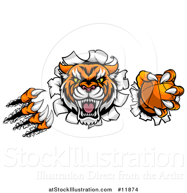 Vector Illustration of a Vicious Tiger Mascot Slashing Through a Wall with a Basketball