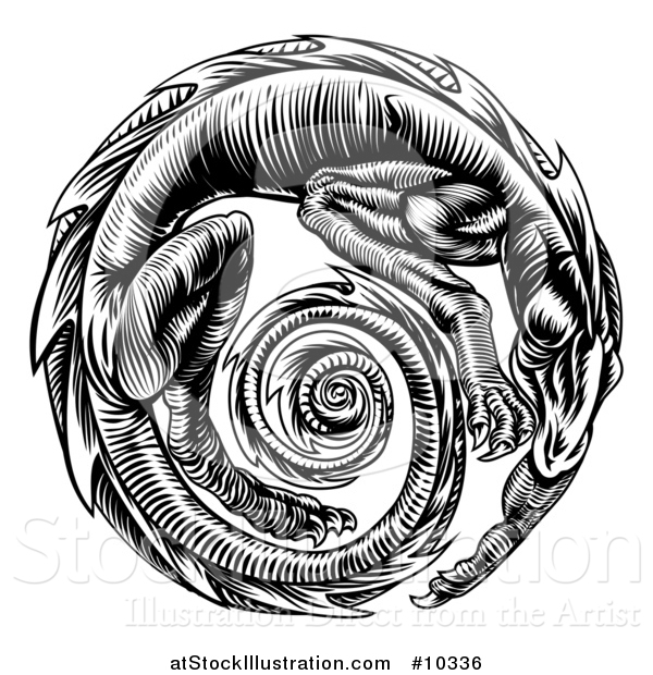 Vector Illustration of a Vintage Black and White Woodcut Dragon Forming a Circle