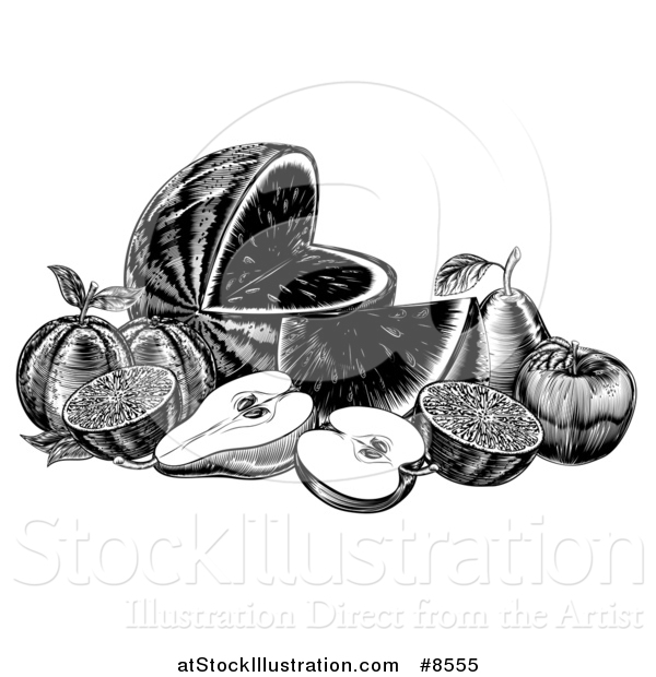 Vector Illustration of a Vintage Black and White Woodcut Still Life of Fruit
