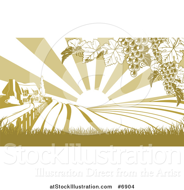 Vector Illustration of a Winery Cottage Farm House and Rolling Hills with Vineyard Grape Vines and Sun Rays in Green and White
