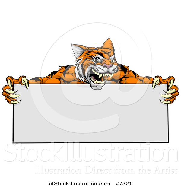 Vector Illustration of an Aggressive Tiger Sports Mascot Holding a Blank Wide Sign