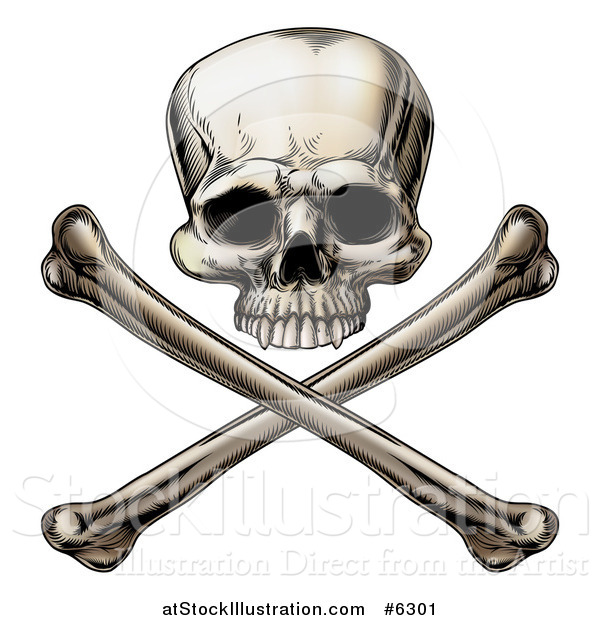 Vector Illustration of an Engraved Human Skull over Crossed Bones
