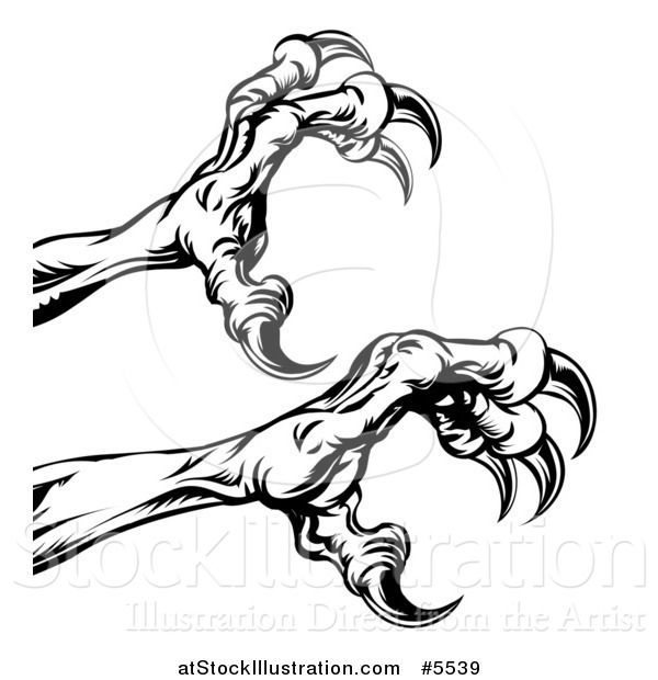 Vector Illustration of Black and White Reaching Eagle Talons