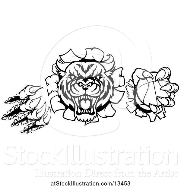 Vector Illustration of Black and White Vicious Tiger Mascot Slashing Through a Wall with a Basketball