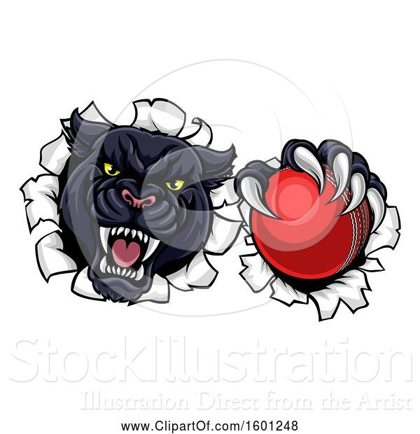 Vector Illustration of Black Panther Mascot Breaking Through a Wall with a Cricket Ball