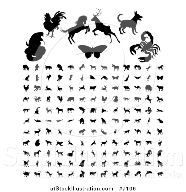 Vector Illustration of Black Silhouetted Animals and Insects