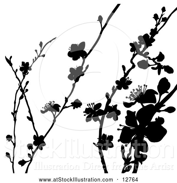 Vector Illustration of Black Silhouetted Blossom Branches