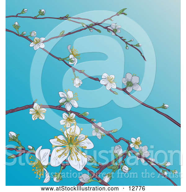 Vector Illustration of Branches with Spring Blossoms over Blue Sky