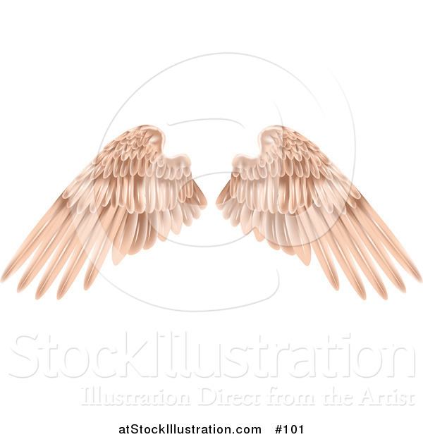 Vector Illustration of Flesh Colored Angel Wings