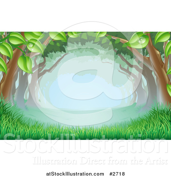 Vector Illustration of Lush Trees Forming a Canopy over Grass in the Woods